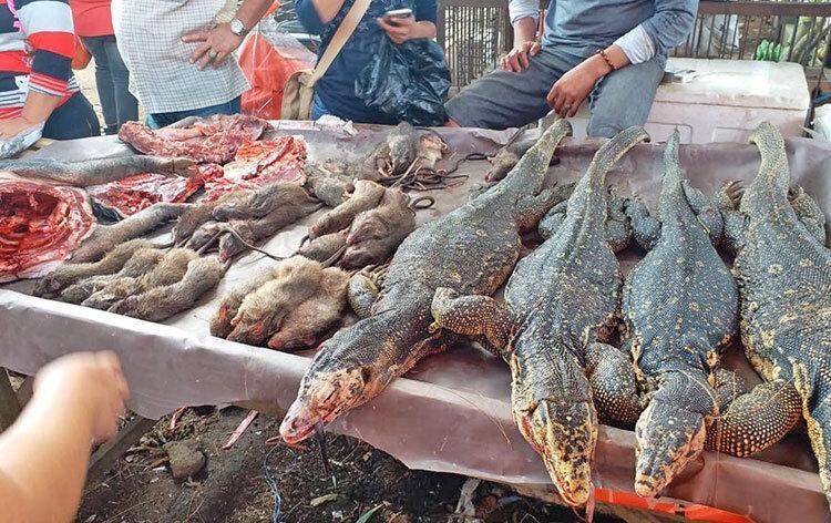 کرونا فراموش شد ، ادامه فعالیت بازار فروش جانوران زنده و وحشی در آسیا